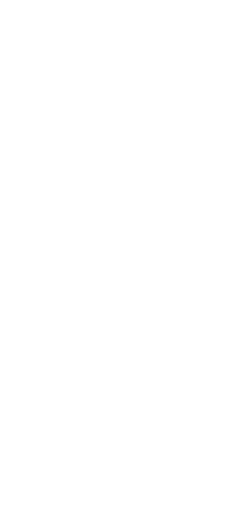 RDI Intuitive Technical